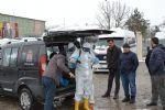 Havza Canlı Hayvan Pazarı Geçici Olarak Kapatıldı