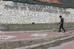 Havza Belediyesi Yabani Ot ile Mücadeleye Başladı